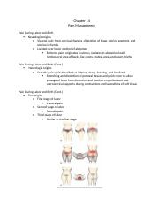 Chp 14 Pain Management.docx