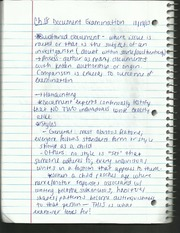 Document Examination Notes