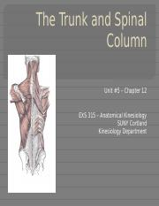 EXS 315 - Unit #5 - The Trunk & Spinal Column-17-BLACKBOARD