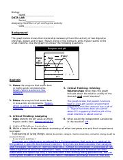 ph and enzyme activity worksheet answer key