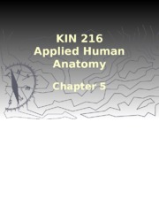 KIN+216+Chapter5+Lecture.odp