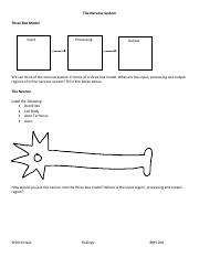 Worksheet 5.pdf