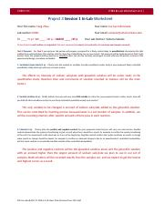 P3 S1 In-Lab Worksheet CV.docx