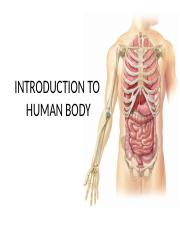 Chapter 1 INTRODUCTION TO THE HUMAN BODY.pptx