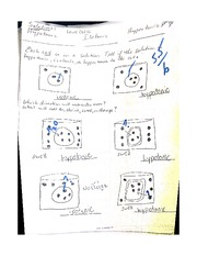 Cell Notes- Isotonic and Hypotonic Cells Worksheet