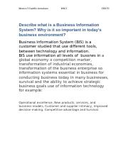 Describe what is a Business Information System.docx