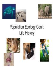 Population Ecology Continued Life History