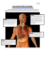 How Alcohol Affects the Body.docx