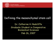 Defining the mesenchymal stem cell