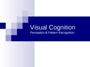 Visual Cognition (1)