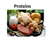 9.14 Proteins