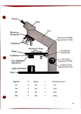 HLSC 120 Lab Material- Components of the Microscope
