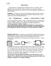 Module_4_Learning_Activity_L-11Burning.docx