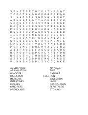 1E Wordsearch 21 10 16.docx
