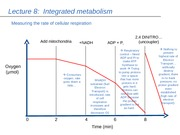 Lecture8-(Integrated Metabolism)