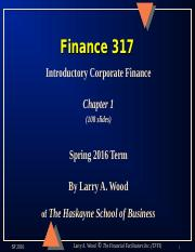 Chapter 1 Finance 317.ppt