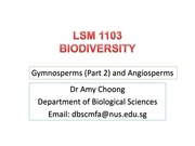 LSM1103 gymnosperms (part 2) and angiosperms IVLE version(1)
