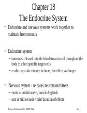 Endocrine System Notes.ppt