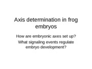 Lecture 5 - Axis determination in frog embryos
