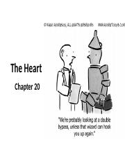 Chapter 20 The Heart STUDENT