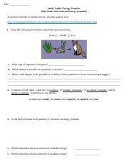 Food Chains Food Web And Energy Pyramid Worksheet Original Doc