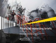Financial_reporting_briefs