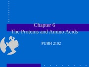 PUBH 1517 - (Chapter 6) The Proteins and Amino Acids