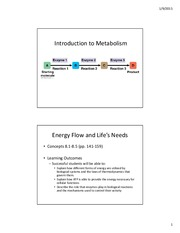 7-Introduction to Metabolism-STUDENTVERSION-2