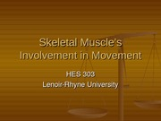 Skeletal Muscle's Involvement in Movement