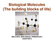 Chapt.3 Biological Molecules
