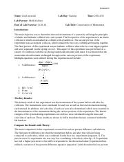 Lab 10 Conservation of Momentum.docx
