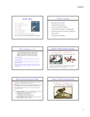 Birds_Lect8_Conservation