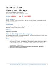 IT1510 Lab-Users and Groups.docx