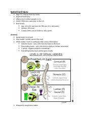 Spinal Cord Injury.docx