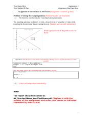 Assignment Formatting Template