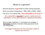 BIS2A Lecture 14 Gene+regulation