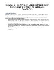 Chapter 6 Understanding of internal controls.docx