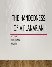 The Handedness of a Planarian