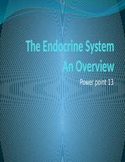 Biol 216 May Term 2016 Powepoint 13 Endocrine System.pptx