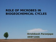 Role of Microbes in Biogeochemical cycles