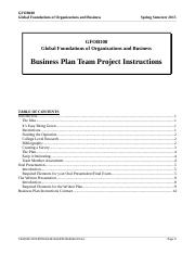 Business Plan Instructions