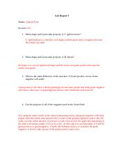 Lab Report - Gram Stain.docx
