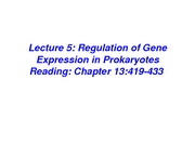 Lecture_5_6_reg_of_prok_gene_expr