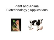 BT-101BT-101Plant and Animal Biotechnology