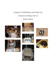 comparative cell membranes and transport lab - kaitlyn gebhard