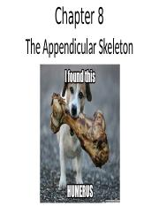 anatomy Chapter 8 lecture - appendicular skeleton