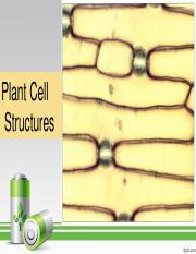 LEC 2-Plant Cell Structures