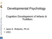 Cognitive Infant Toddlers