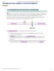 Chapter 1.5 S-3- Transcription-the process of making RNA - WebCOM™ 2.0 copy