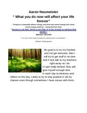 One pager Aaron Neumeister